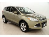 2013 Ginger Ale Metallic Ford Escape SE 2.0L EcoBoost #112068422