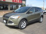 2013 Ginger Ale Metallic Ford Escape SE 1.6L EcoBoost 4WD #112117767