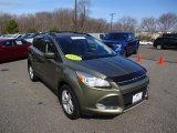 2013 Ginger Ale Metallic Ford Escape SE 1.6L EcoBoost 4WD #112184978