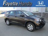 2014 Kona Coffee Metallic Honda CR-V LX AWD #112229418