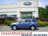 2009 Sport Blue Metallic Ford Escape XLT 4WD #11208398