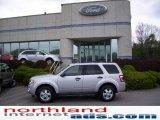 2009 Brilliant Silver Metallic Ford Escape XLT 4WD #11208391