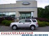 2009 Brilliant Silver Metallic Ford Escape XLT V6 4WD #11208396