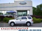 2009 Brilliant Silver Metallic Ford Escape XLT #11208394