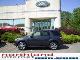 2009 Black Pearl Slate Metallic Ford Escape Limited V6 4WD #11208390