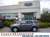 2009 Sterling Grey Metallic Ford Escape XLT V6 4WD #11208393