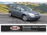 2005 Medium Gray Metallic Chevrolet Malibu Maxx LS Wagon #112415811