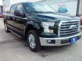2016 Green Gem Ford F150 XLT SuperCrew #112523225