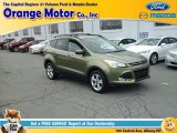 2013 Ginger Ale Metallic Ford Escape SE 1.6L EcoBoost 4WD #112721770