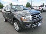 2015 Magnetic Metallic Ford Expedition Platinum 4x4 #112893602