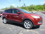2016 Sunset Metallic Ford Escape SE 4WD #113007634