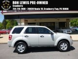 2009 Light Sage Metallic Ford Escape XLT V6 4WD #113007625