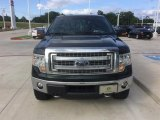 2014 Green Gem Ford F150 XLT SuperCrew 4x4 #113061729