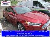 2013 Ruby Red Metallic Ford Fusion Titanium #113094254