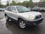2003 Pewter Hyundai Santa Fe GLS #113151814