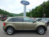 2013 Ginger Ale Metallic Ford Edge SEL AWD #113260679