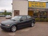 2003 Oxford Green Metallic BMW 3 Series 325xi Sedan #11327923