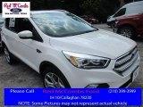 2017 White Platinum Ford Escape Titanium #113330675