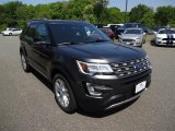 2016 Magnetic Metallic Ford Explorer XLT 4WD #113352056