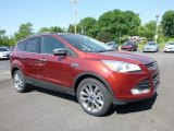 2016 Sunset Metallic Ford Escape SE 4WD #113374355