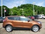 2017 Canyon Ridge Ford Escape SE 4WD #113488166