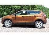 2017 Canyon Ridge Ford Escape S #113526201