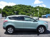 2013 Frosted Glass Metallic Ford Escape SEL 2.0L EcoBoost 4WD #113563538