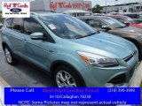 2013 Frosted Glass Metallic Ford Escape Titanium 2.0L EcoBoost #113563500