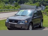 2006 Dark Shadow Grey Metallic Ford Escape XLT V6 4WD #11356319