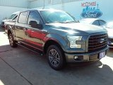 2016 Magnetic Ford F150 XLT SuperCrew #113614808