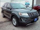 2016 Magnetic Metallic Ford Explorer XLT #113614803