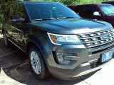 2016 Magnetic Metallic Ford Explorer XLT #113614800