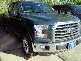 2016 Magnetic Ford F150 XLT SuperCrew 4x4 #113713323