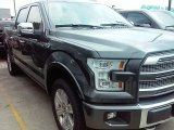 2016 Magnetic Ford F150 Platinum SuperCrew 4x4 #113742652