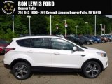 2017 White Platinum Ford Escape SE 4WD #113768570