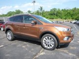 2017 Canyon Ridge Ford Escape Titanium 4WD #113818804