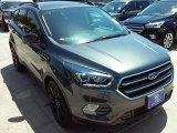 2017 Magnetic Ford Escape SE #113818724