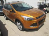 2016 Electric Spice Metallic Ford Escape Titanium #113847321