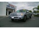 2005 Silver Sky Metallic Toyota Tundra SR5 Access Cab #11356288