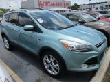 2013 Frosted Glass Metallic Ford Escape Titanium 2.0L EcoBoost #113940400