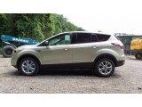 2017 White Gold Ford Escape SE #113975342