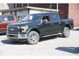 2016 Green Gem Ford F150 XLT SuperCrew 4x4 #114301446