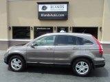 2010 Polished Metal Metallic Honda CR-V EX-L AWD #114355075