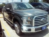 2016 Magnetic Ford F150 XLT SuperCrew #114544437
