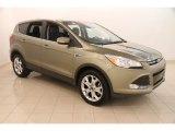 2013 Ginger Ale Metallic Ford Escape SEL 1.6L EcoBoost #114544724