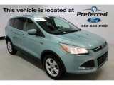 2013 Frosted Glass Metallic Ford Escape SE 1.6L EcoBoost 4WD #114623789