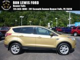 2014 Karat Gold Ford Escape SE 1.6L EcoBoost 4WD #114646125