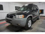 2002 Ford Escape Black Clearcoat