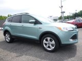 2013 Frosted Glass Metallic Ford Escape SE 1.6L EcoBoost 4WD #114837741