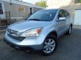 2009 Glacier Blue Metallic Honda CR-V EX-L 4WD #114837866